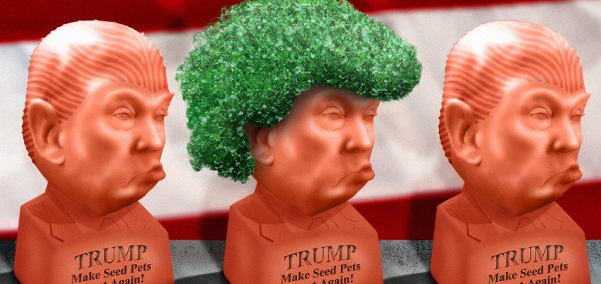 Cha, cha, cha, CHiaaaa Trump!