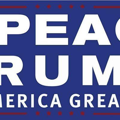 Impeach Trump & Make America Great Again!